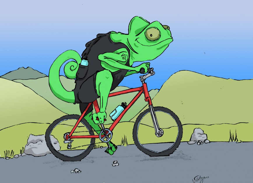 Caméléon_à_vélo